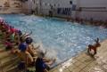 Η γιορτή της Ακαδημίας Κολύμβησης στην Τούμπα!