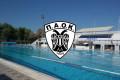 13 μετάλλια για τον ΠΑΟΚ στο Πανελλήνιο Πρωτάθλημα Κολύμβησης!