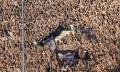 Τεράστια κίνηση ανθρωπιάς από τον ΣΦ ΠΑΟΚ Καβάλας!